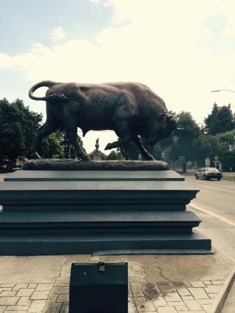 Howard Johnson Inn Guatemala City: Bull just in front of hotel