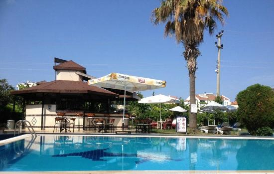 Golden Moon Hotel: The pool and pool bar.