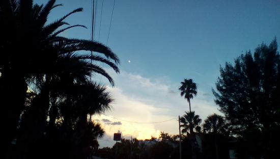 Anna Maria Motel & Resort Apartments: The moon just outside the Motel