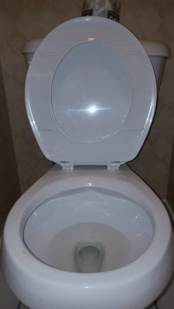 Sandman Inn Cranbrook: Toilet bowl not cleaned