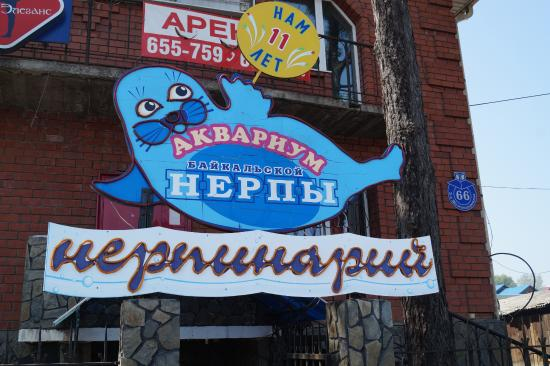 Irkutsk, Rusija: Нерпинарий