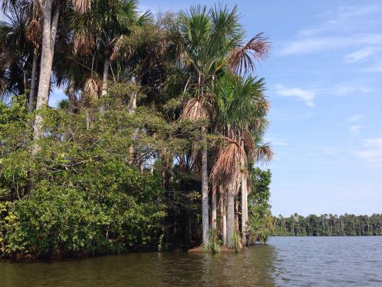 Inkaterra Reserva Amazonica: photo3.jpg
