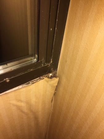Holiday Inn Middletown: photo0.jpg