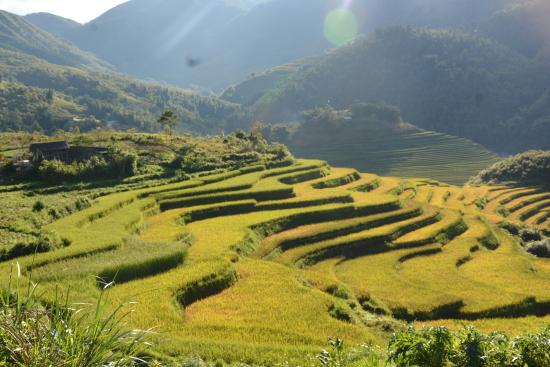 Sapa Pathfinder Travel Day Tours