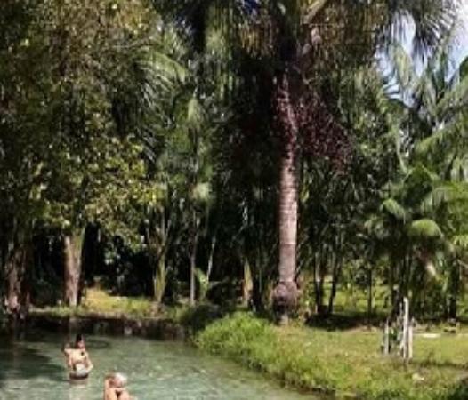 Ananindeua, PA: Que banho saudável