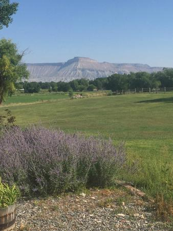 Grand Junction, CO: View of Mt. Garfield