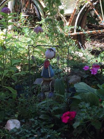 Magnifique jardin ombragé et fleuri. Carte amusante ...