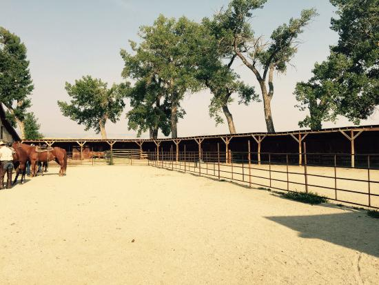 The TA Guest Ranch 이미지