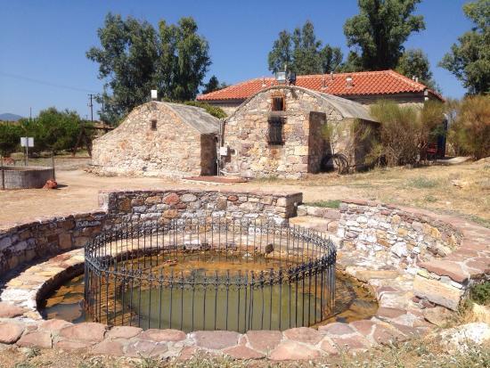 Polichnitos Hot Springs - Lesvos