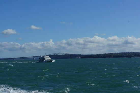 Auckland To Waiheke Island Ferry Schedule