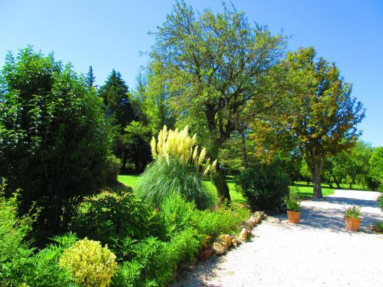 Le Mas Julien : Le jardin