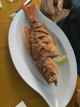 Los Camisones Restaurante: photo0.jpg