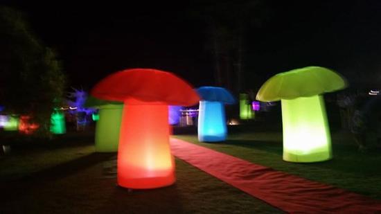 Barut Lara: Party night