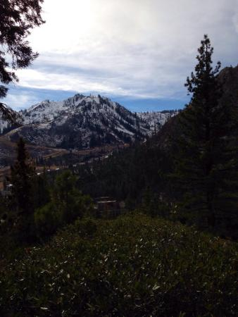 The Village At Squaw Valley: View from the hill behind OVI, a few minutes hike