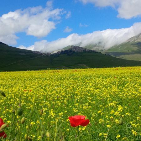 Monte Veletta: Prato e Castelluccio di Norcia