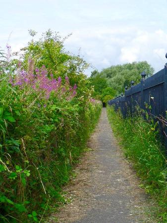 Darley Dale, UK: Beautiful walk at the bottom of the park, right next to the railway line.  Don't forget to wave