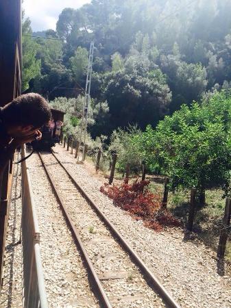 Ferrocarril de Soller: photo3.jpg
