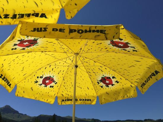 Brandegg : Beautiful sun umbrellas