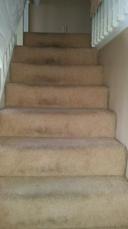 Seaside Oceanfront Inn: Stair carpeting