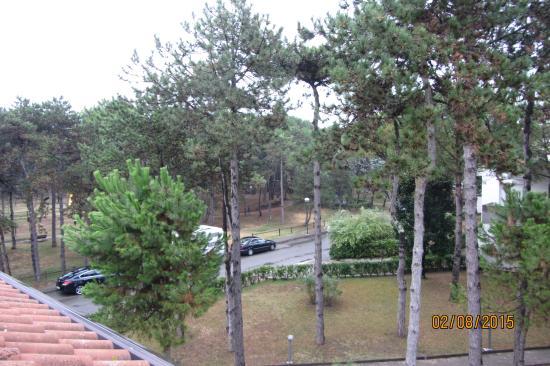 Parco Hemingway Villaggio: Вид из окна