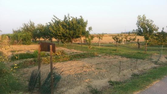 Agriturismo La Gardenia