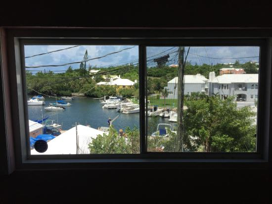 Island Cusine: view out the back window