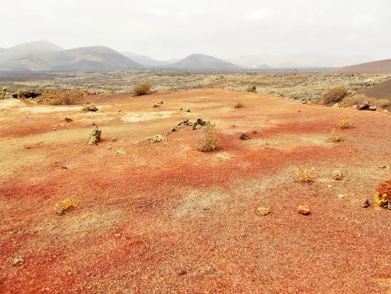 Canary Trekking Lanzarote: Colours in a volcanic landscape