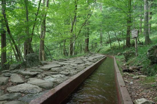 Tsukechi Gorge: 遊歩道