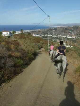 Andale Centro de Equitacion