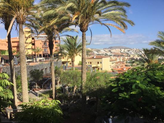 Vue hotel picture of melia jardines del teide costa for Melia jardines tenerife