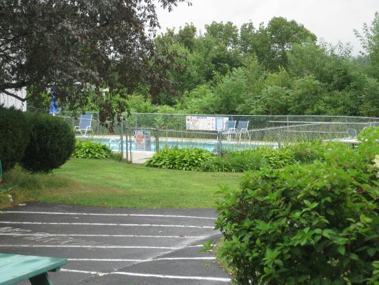 School House Motel: The pool