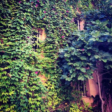 Le Rivage : Esterno dell'edificio in stile provenzale