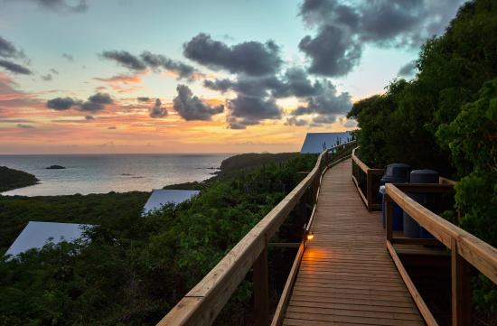 Concordia Eco-Resort Concordia Eco Resort & Concordia Eco Resort-stairs to tents and view of Salt Pond Bay and ...