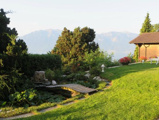 B&B Chez Bibiane & Rene : The lovely garden and pond