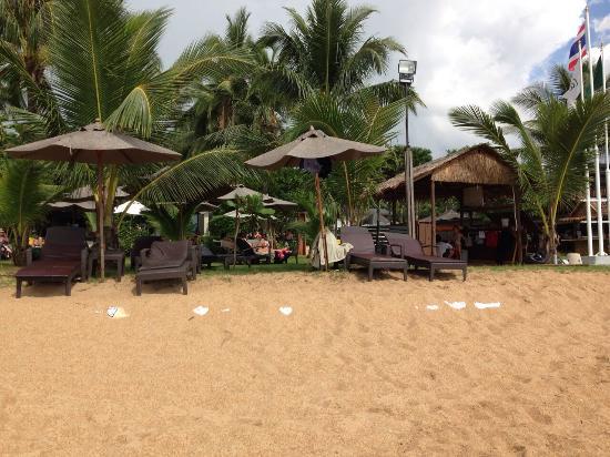 Strand Bild Von La Flora Resort Spa Khao Lak