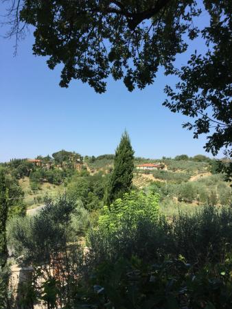 Villa il Colto: View from the poo,
