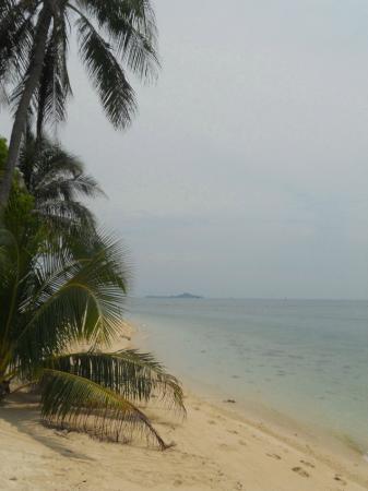 Selingan Turtle Island: La spiaggia dell'hotel - snorkeling fantastico
