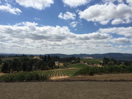 A Great Oregon Wine Tour: photo3.jpg