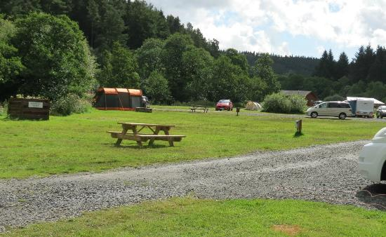 Kielder Caravan & Camping Site: View from our van window