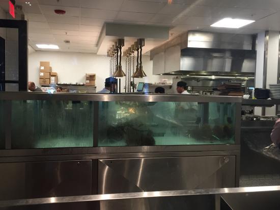 Water Grill: photo3.jpg
