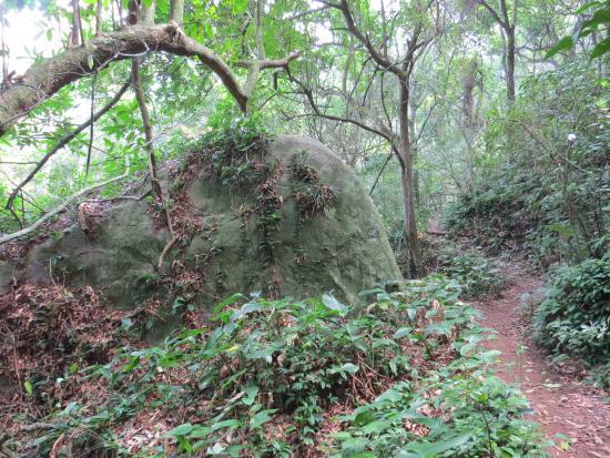 Parque Natural Municipal da Prainha