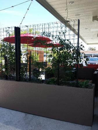 Cheap Hotels Near Huntington Beach