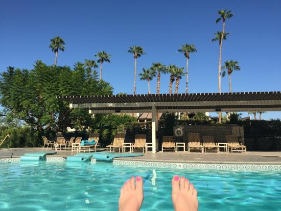 Desert Hills : The pool
