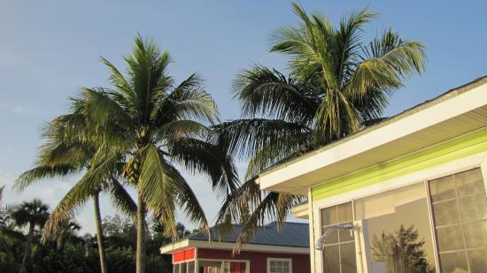 Castaways Beach and Bay Cottages: near our cottage