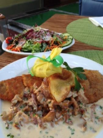 Hotel Schwarzer Bock: Veal Schnitzel with Mushroom Gravy and Salad