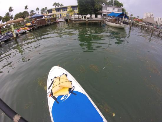 Tampa Bay SUP Stand Up Paddleboarding & Kayaking : Looking at the starting point