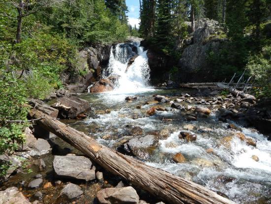 Mount Zirkel Wilderness Area: Falls along trail #1150