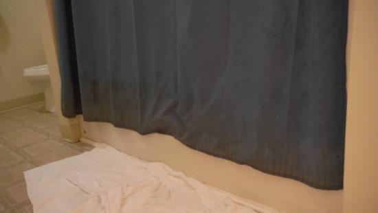 Kingsley, MI: DIRTY shower curtain! YUCK!!