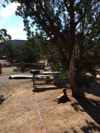 Santa Fe KOA Cabins and Campground: photo1.jpg