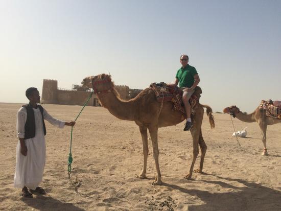 Doha Fort: Camel riding